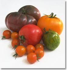 What's an heirloom tomato anyway?