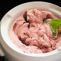 Basic Fruit Ice Cream