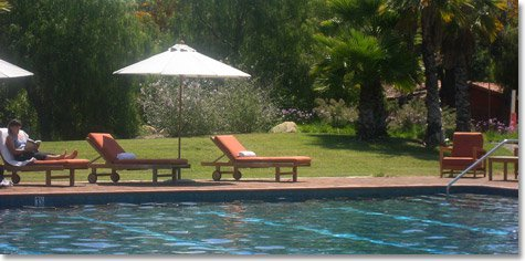Poolside at Rancho La Puerta