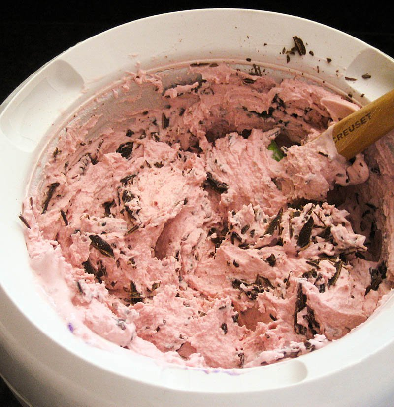 Cherry Ice Cream with Chocolate Chips / Jill Silverman Hough