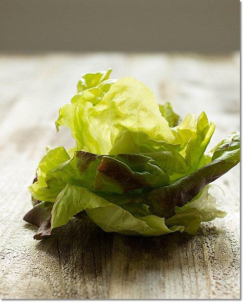 Lettuce leaves on JillHough.com