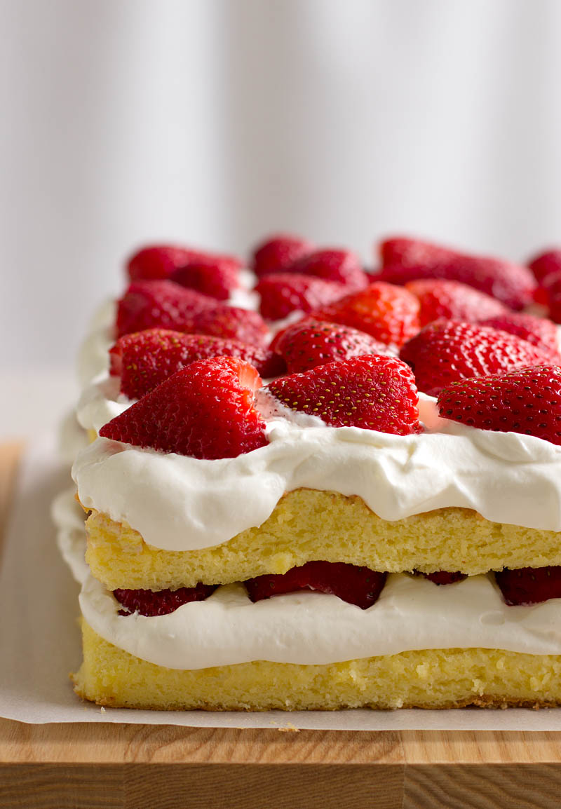 Strawberry Sponge Cake / JillHough.com Sweet and creamy, soft and pillowy, fruity and bright—this cake is one of my favorite foods that my grandmother used to make. #strawberry #cake #whippedcream #spongecake