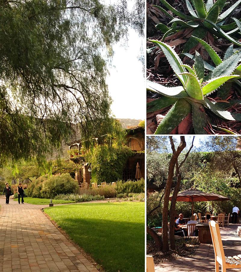 Dining Room at Rancho La Puerta / Jill Silverman Hough
