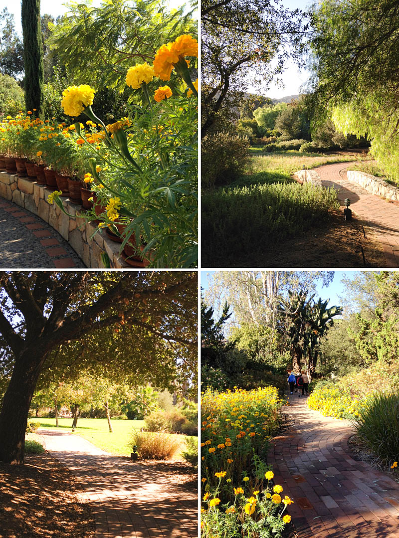 Grounds at Rancho La Puerta / Jill Silverman Hough