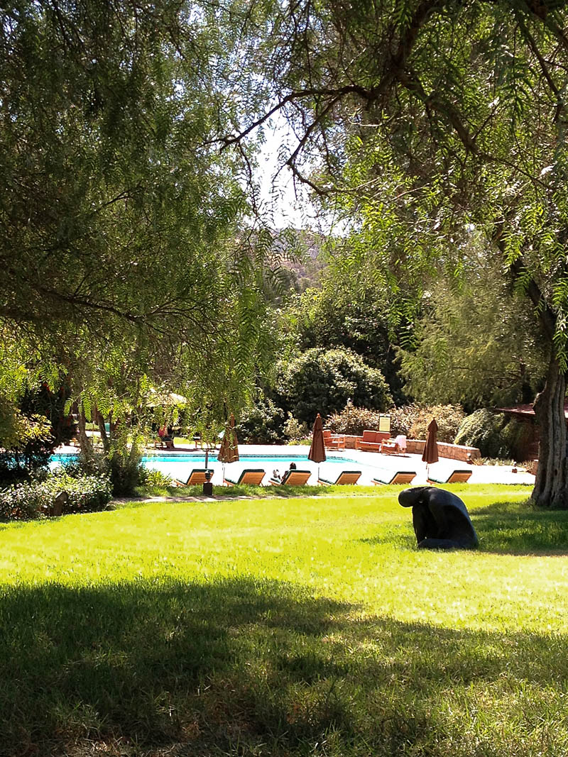 Pool at Rancho La Puerta / Jill Silverman Hough